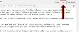 wp-editor-text-tab