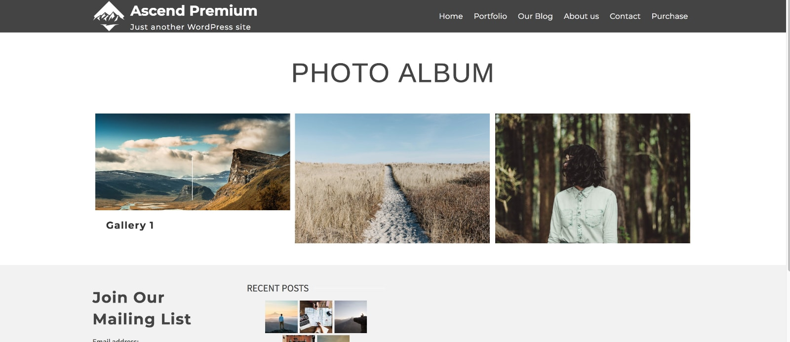 gallery-album-on-page-kadence-themes-galleries