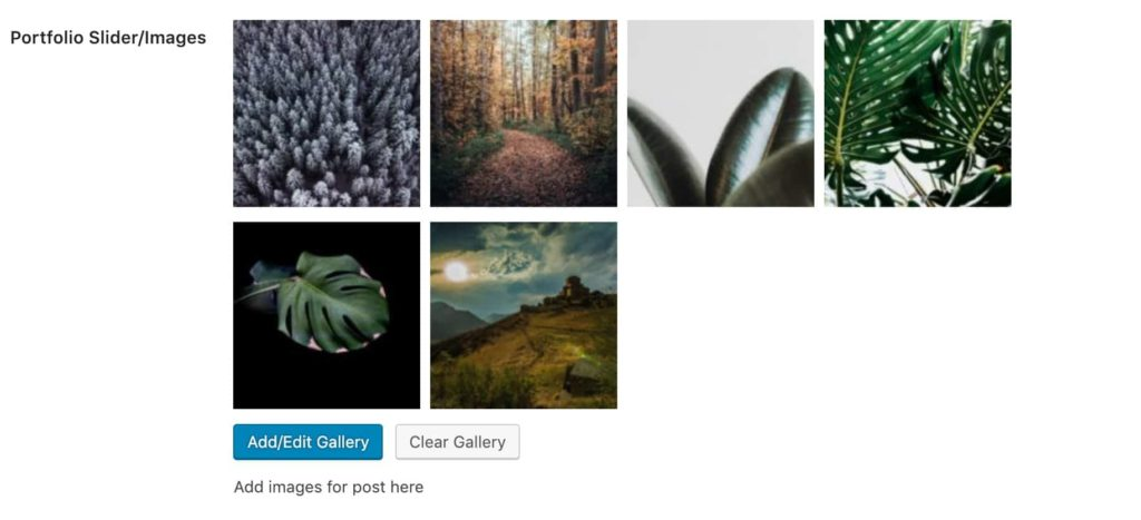 Portfolio Slider Images