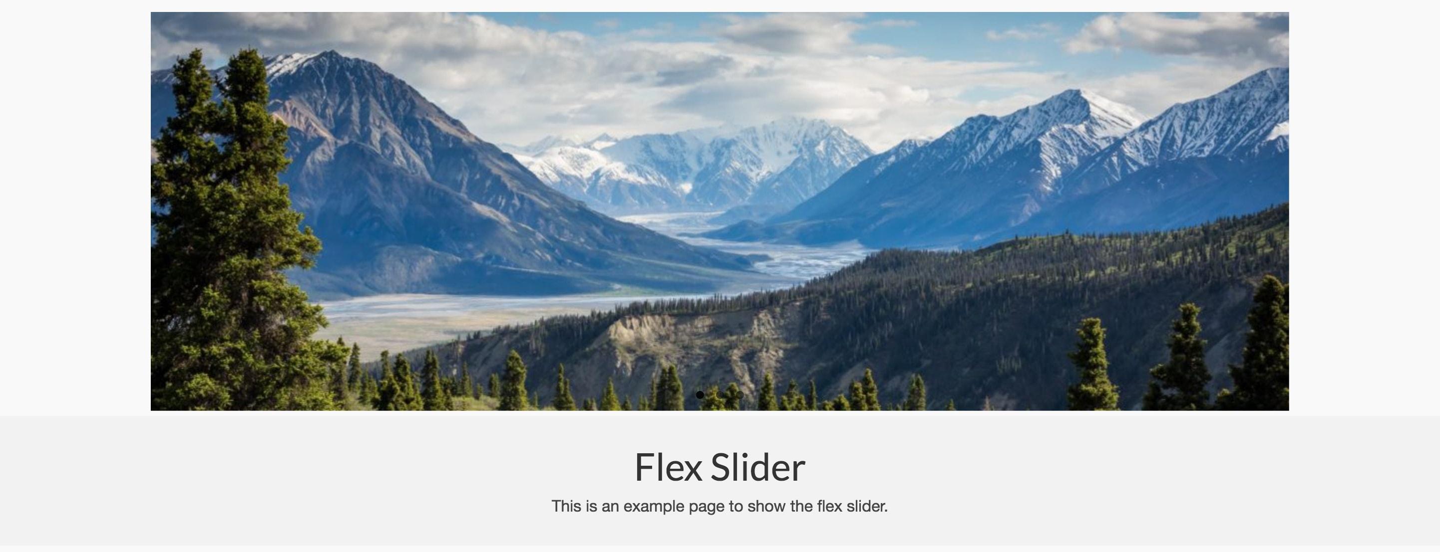 Flex Slider Virtue Premium-min