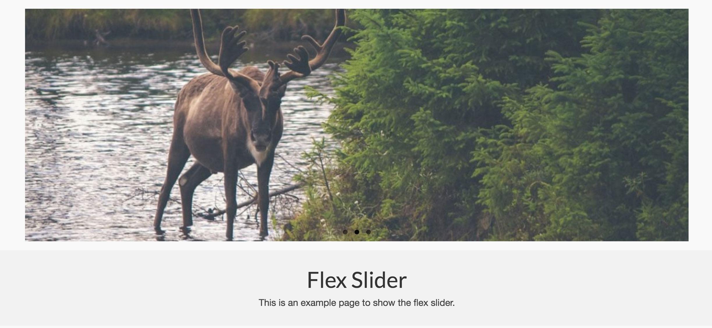 flex_slider